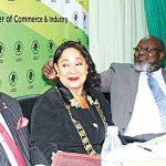 LCCI President nike akande