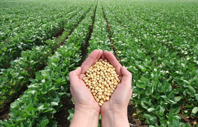 Agric Loan SMEs Nigeria