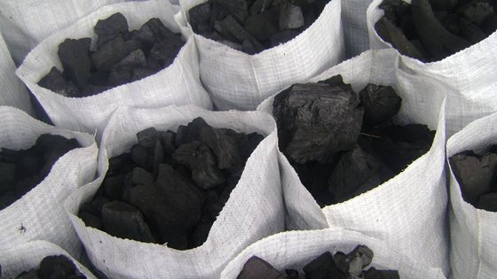 how-to-start-a-lucrative-charcoal-export-business-in-nigeria
