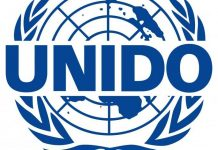 United Nations Industrial Development Organisation Loan