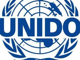 United Nations Industrial Development Organisation Loan