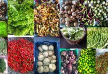agro products nigeria lost trillions from export