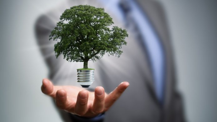 business sustainability measures you should know