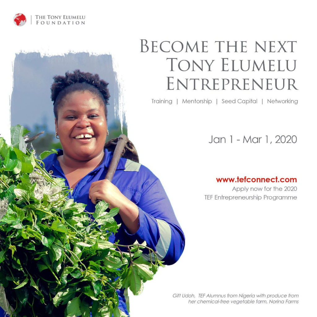 Tony Elumelu Foundation 2020 application opens
