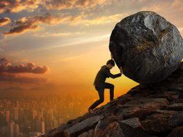 Does hard work guarantee business success
