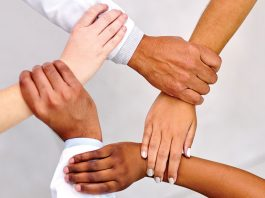 Building a Great Team for Your Start-up